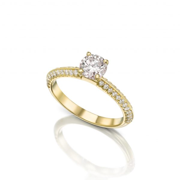 טבעת יהלומים 2 שורות